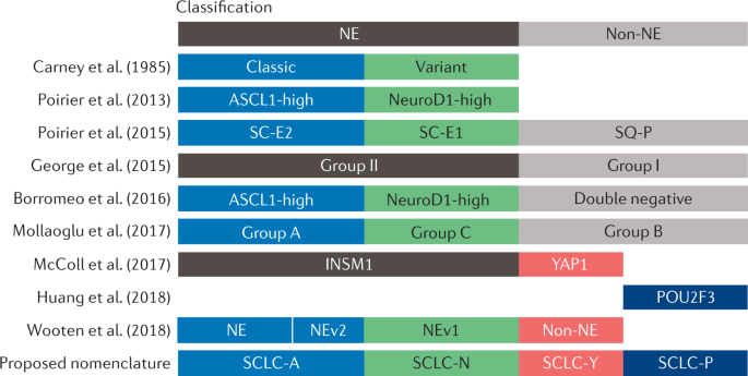 Molecular subtypes of small cell lung cancer: a synthesis of
