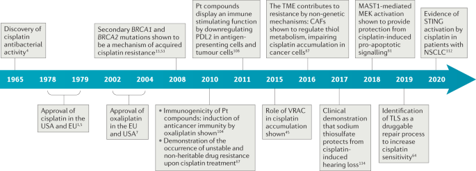 The rediscovery of platinum-based cancer therapy