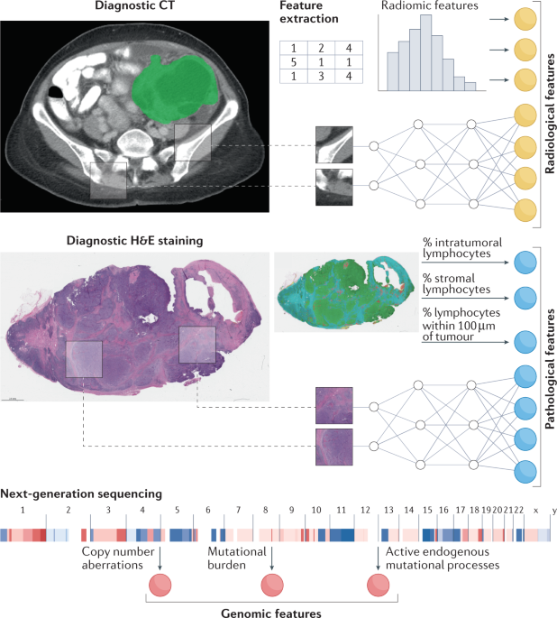 Harnessing multimodal data integration to advance precision oncology