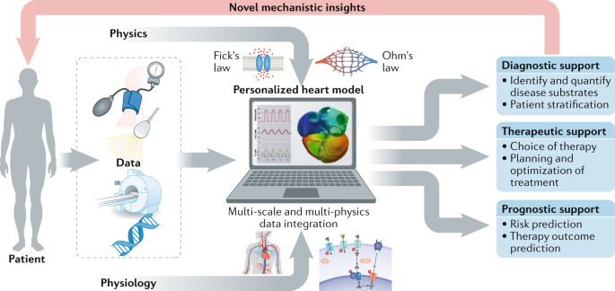 Computational models in cardiology | Nature Reviews Cardiology