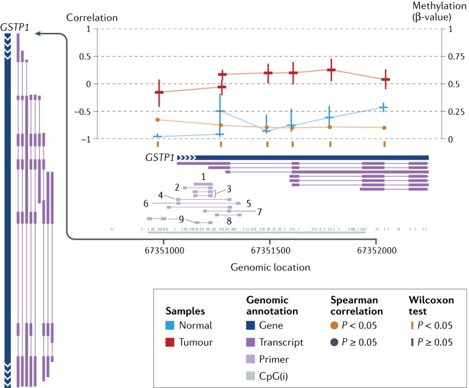 Analysis of DNA methylation in cancer: location revisited | Nature ...