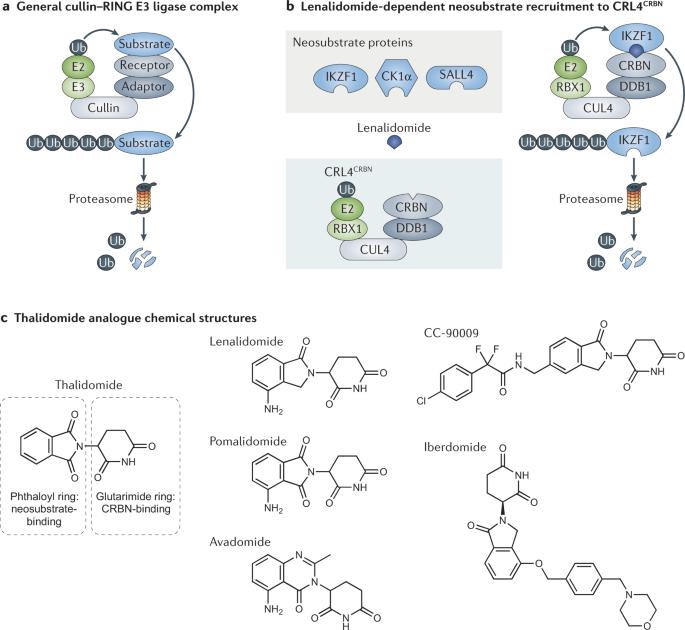 Biochemistry  - cover