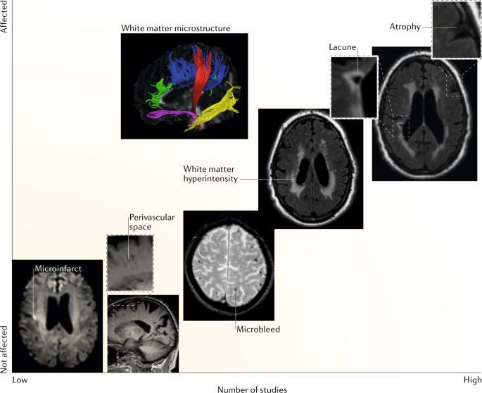Nature Reviews Clinical Endocrinology