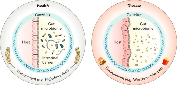Establishing the role of diet in the microbiota–disease axis