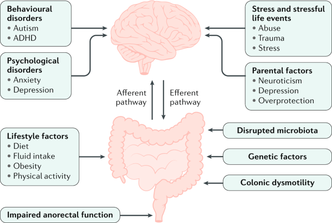 Management of functional constipation in children and adults