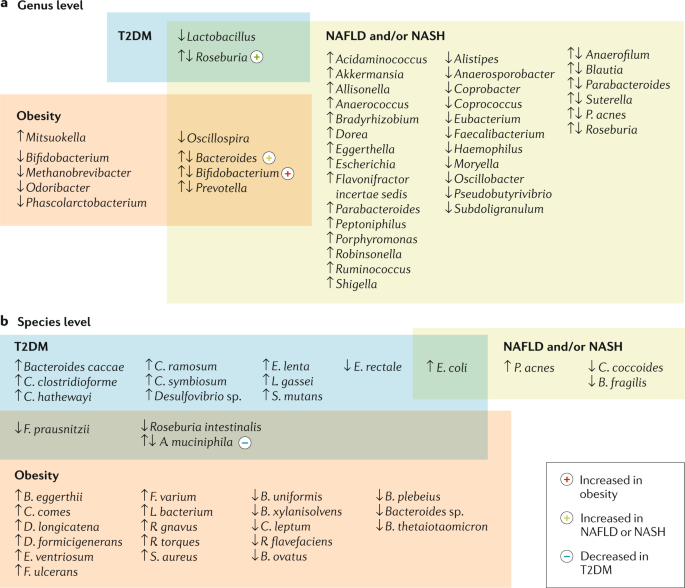 Gut microbiota and human NAFLD: disentangling microbial signatures from metabolic disorders