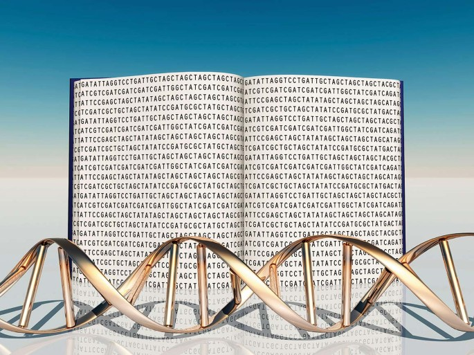 A long read of the human genome