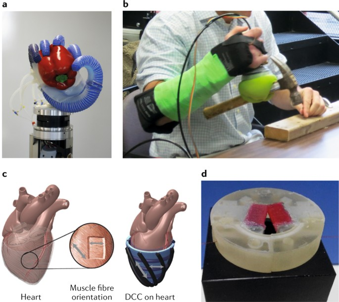 Biomedical Applications Of Soft Robotics Nature Reviews Materials