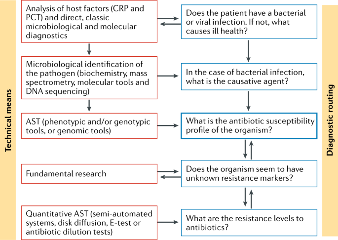 Developmental roadmap for antimicrobial susceptibility