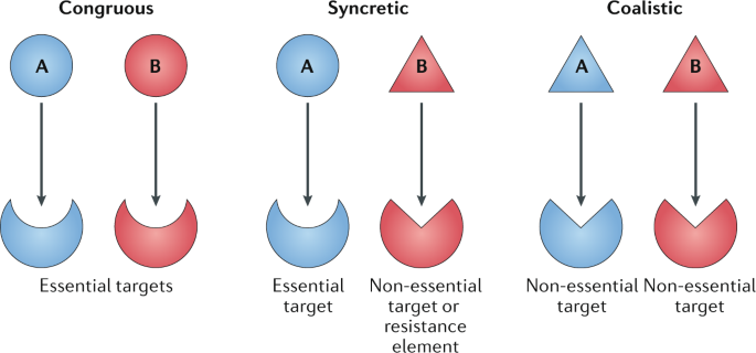 Drug combinations: a strategy to extend the life of antibiotics in