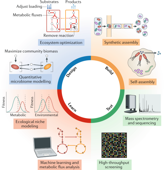 Common Principles And Best Practices For Engineering Microbiomes Nature Reviews Microbiology