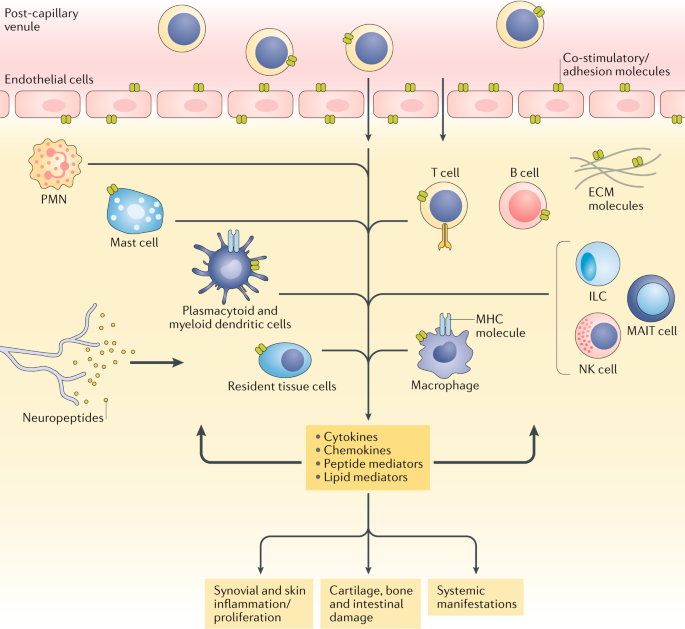 psoriasis antibody therapy)