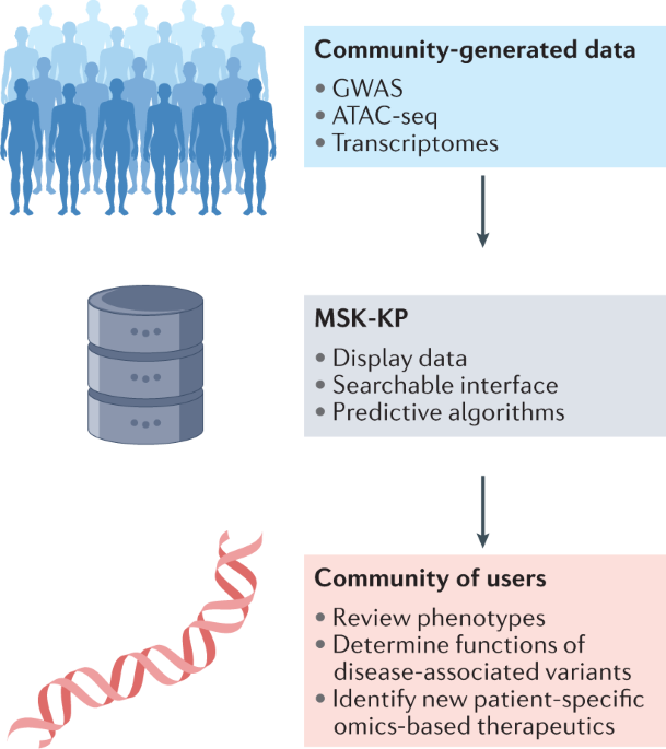 The Musculoskeletal Knowledge Portal: improving access to multi-omics data - Nature Reviews Rheumatology
