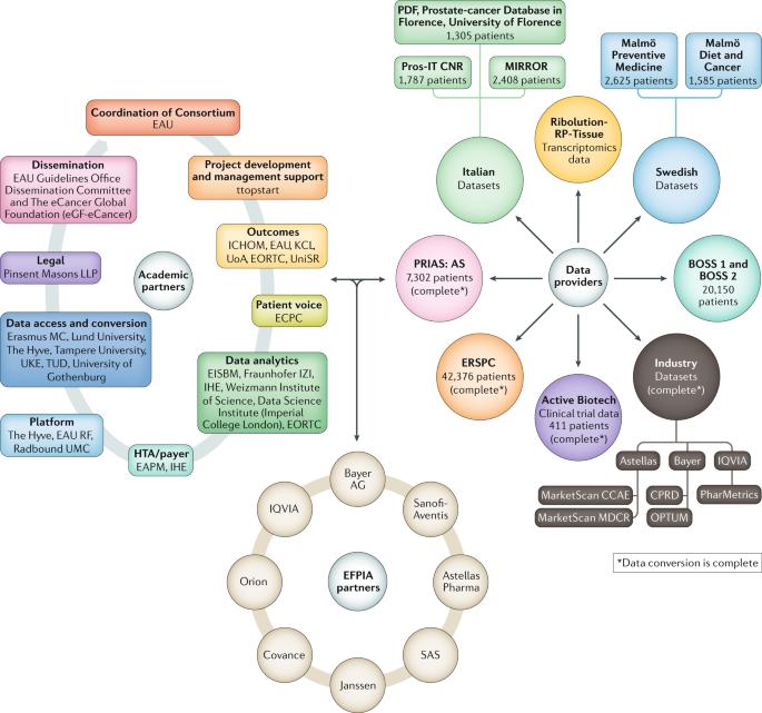 Tinktúra Echinacea a prosztatitisből A prosztatitis készlet kezelése