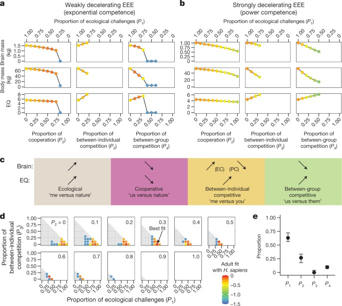Inference Of Ecological And Social Drivers Of Human Brain Size