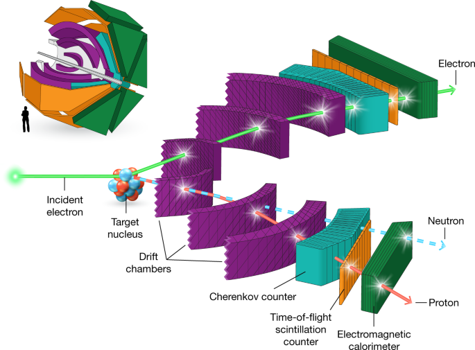 probing high momentum protons and neutrons in neutron rich nuclei