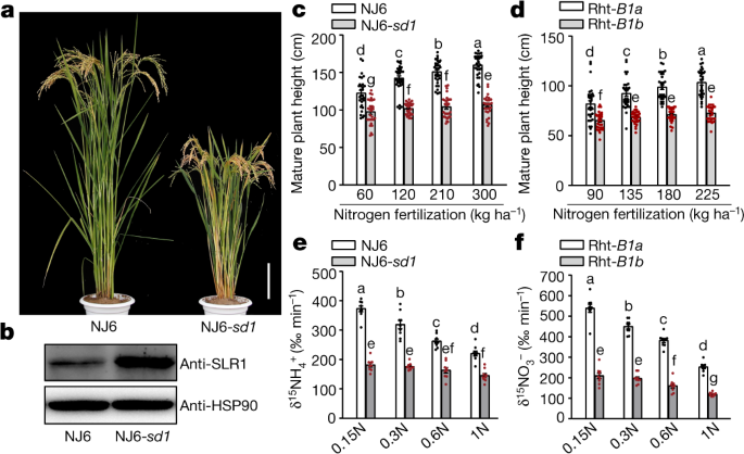 Modulating Plant Growth Metabolism Coordination For Sustainable Agriculture Nature