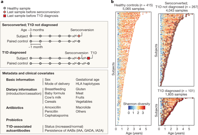 The human gut microbiome in early-onset type 1 diabetes from