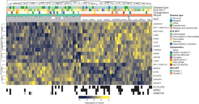 Functional genomic landscape of acute myeloid leukaemia   Nature