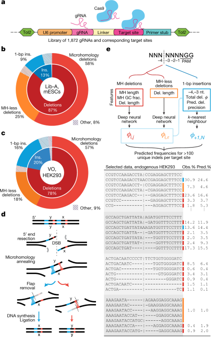 A High Throughput Genome Integrated Library For Aying Cas9 Editing Products B Categories Of At 1 996 Lib Target Sites In Mescs C