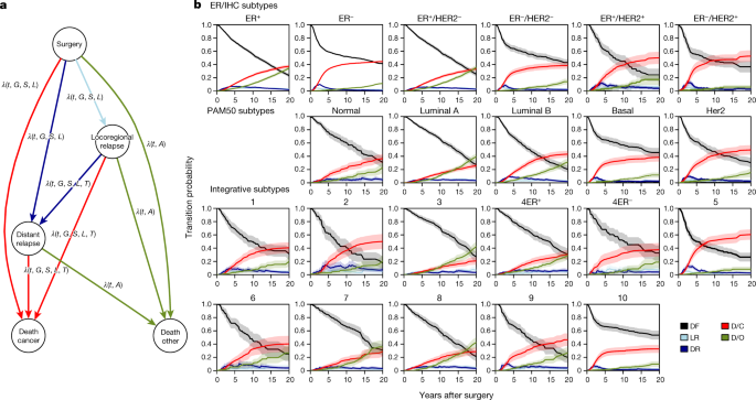 Dynamics of breast-cancer relapse reveal late-recurring ER-positive genomic  subgroups | Nature