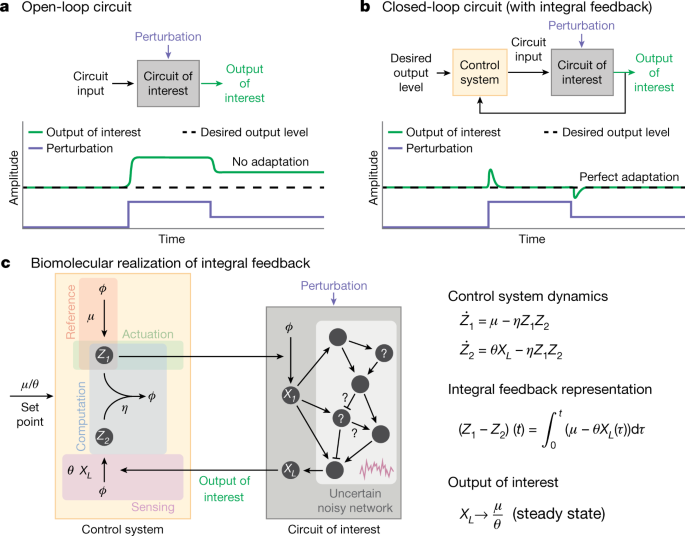 A universal biomolecular integral feedback controller for robust