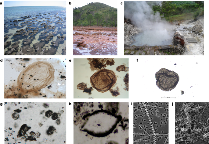 Challenges in evidencing the earliest traces of life