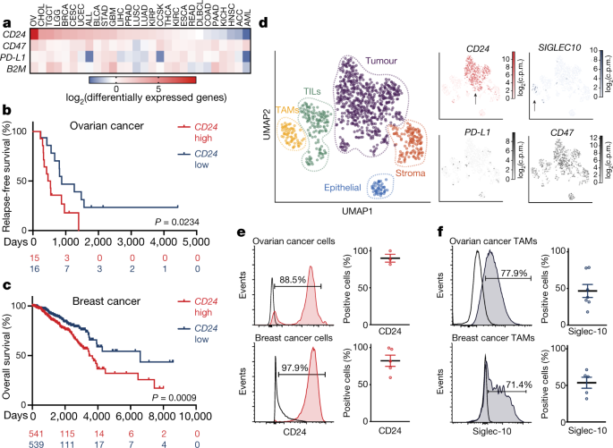 CD24 signalling through macrophage Siglec-10 is a target for cancer