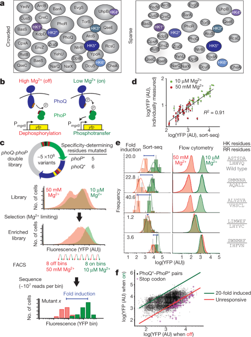 Engineering orthogonal signalling pathways reveals the sparse occupancy of sequence space
