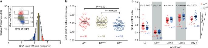 Developmental ROS individualizes organismal stress resistance and lifespan