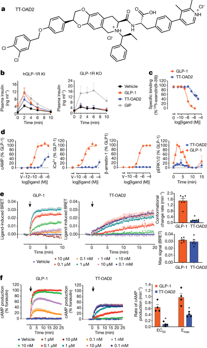 Activation of the GLP-1 receptor by a non-peptidic agonist