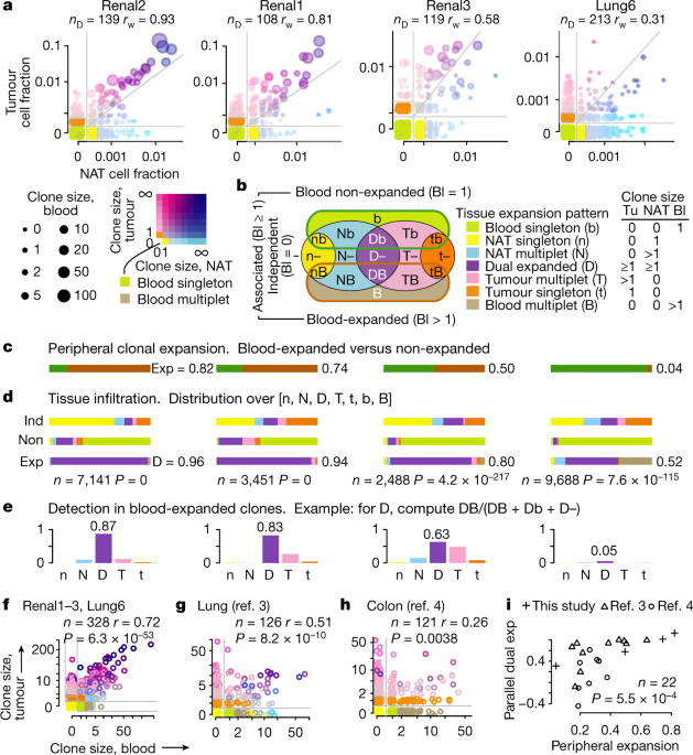 Peripheral T cell expansion predicts tumour infiltration and clinical response