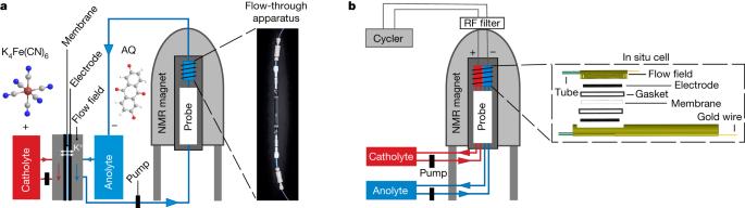 In situ NMR metrology reveals reaction mechanisms in redox flow batteries
