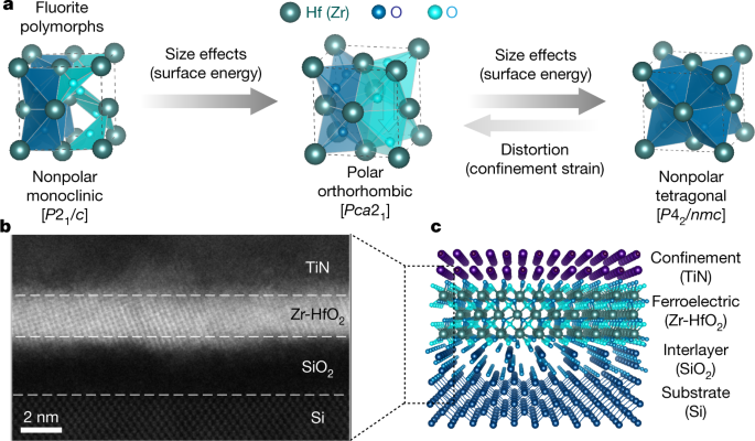 Enhanced ferroelectricity in ultrathin films grown directly on silicon
