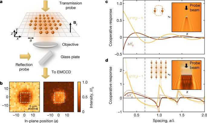 A subradiant optical mirror formed by a single structured atomic layer - Nature.com