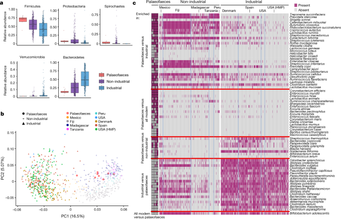 Reconstruction of ancient microbial genomes from the human gut