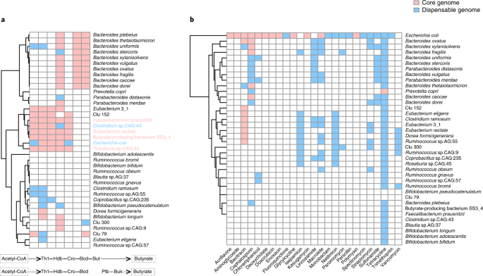 1 520 Reference Genomes From Cultivated Human Gut Bacteria Enable