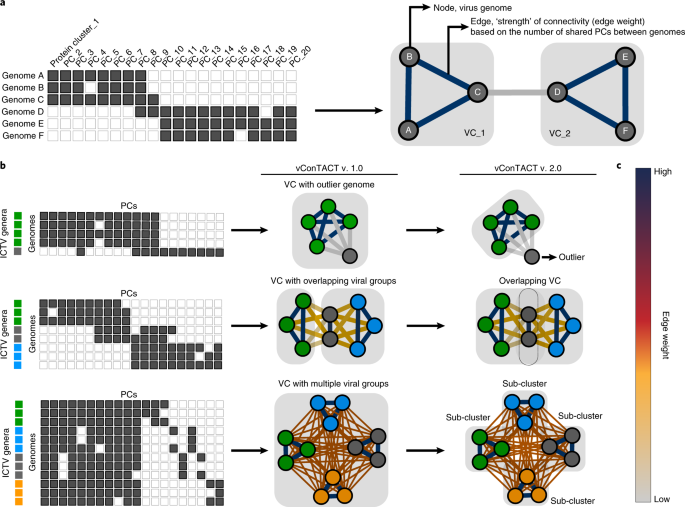 efc654b927 a, Left side panel: matrix of shared PCs (gray blocks) between a set of  virus genomes can be visualized as a network of interconnected nodes, ...