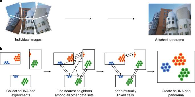 Efficient integration of heterogeneous single-cell transcriptomes
