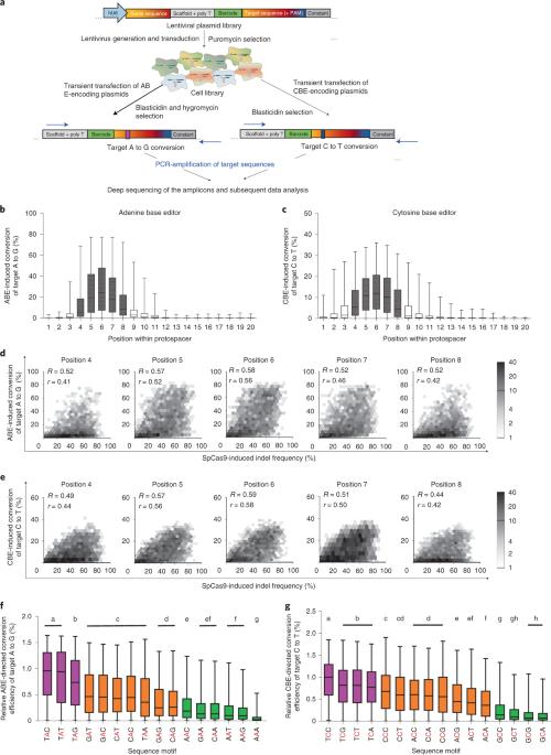 Sequence-specific prediction of the efficiencies of adenine and cytosine base editors