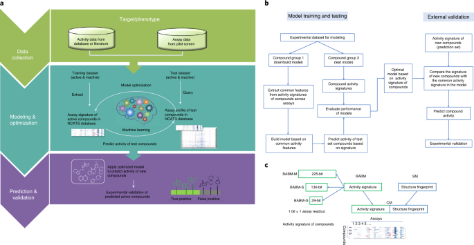Biological activity-based modeling identifies antiviral leads against SARS-CoV-2 thumbnail