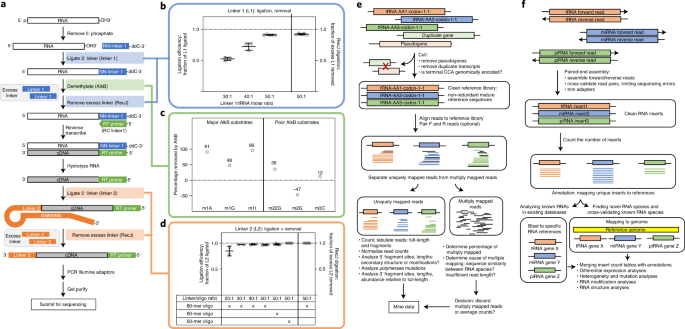 Quantitative mapping of the cellular small RNA landscape with AQRNA-seq thumbnail
