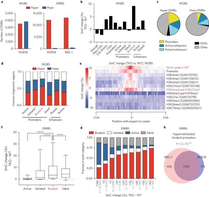 TET Proteins Safeguard Bivalent Promoters From De Novo Methylation