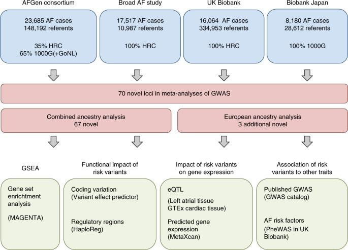 Multi-ethnic genome-wide association study for atrial fibrillation | Nature  Genetics