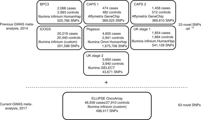 Association analyses of more than 140000 men identify 63 new the top section describes the prca gwas meta analysis published in 2014 in which 23 novel variants were identified the current prca gwas meta analysis fandeluxe Choice Image