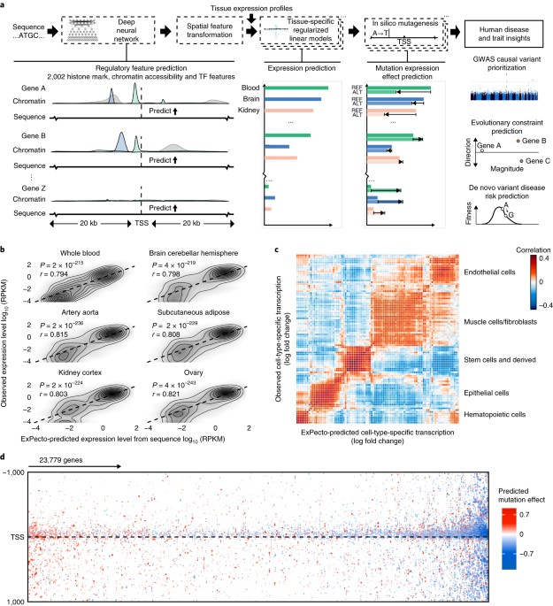 nature.com - Deep learning sequence-based ab initio prediction of variant effects on expression and disease risk