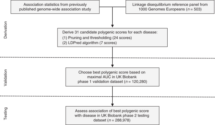 Genome-wide polygenic scores for common diseases identify