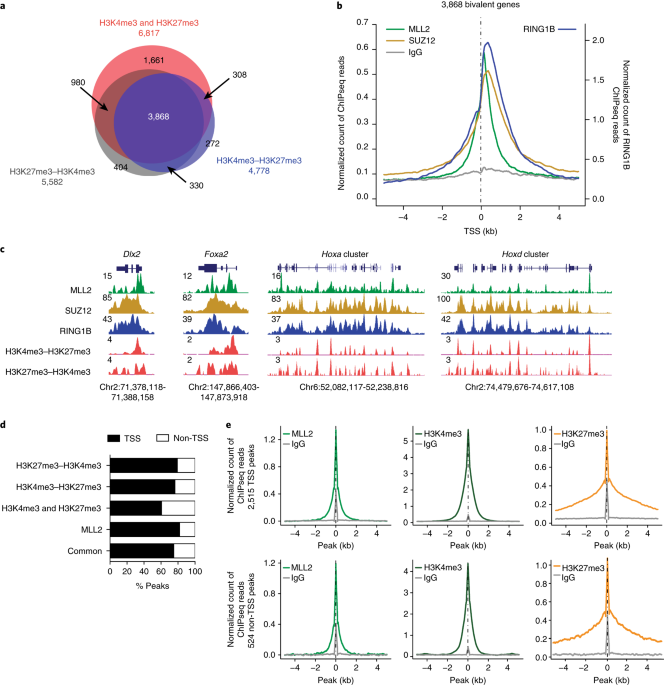 nature.com - Promoter bivalency favors an open chromatin architecture in embryonic stem cells