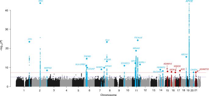 Genetic meta-analysis of diagnosed Alzheimer's disease identifies