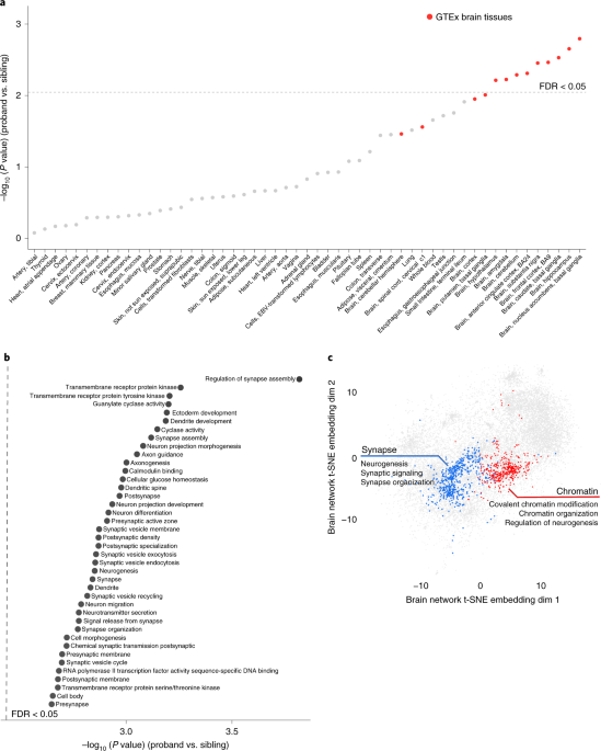 Autism Risk Genes Also Linked To Higher >> Whole Genome Deep Learning Analysis Identifies Contribution Of